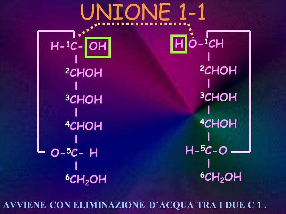 UNIONE 1-1 H O-1CH H-1C- OH l l 2CHOH 2CHOH 3CHOH 3CHOH 4CHOH 4CHOH