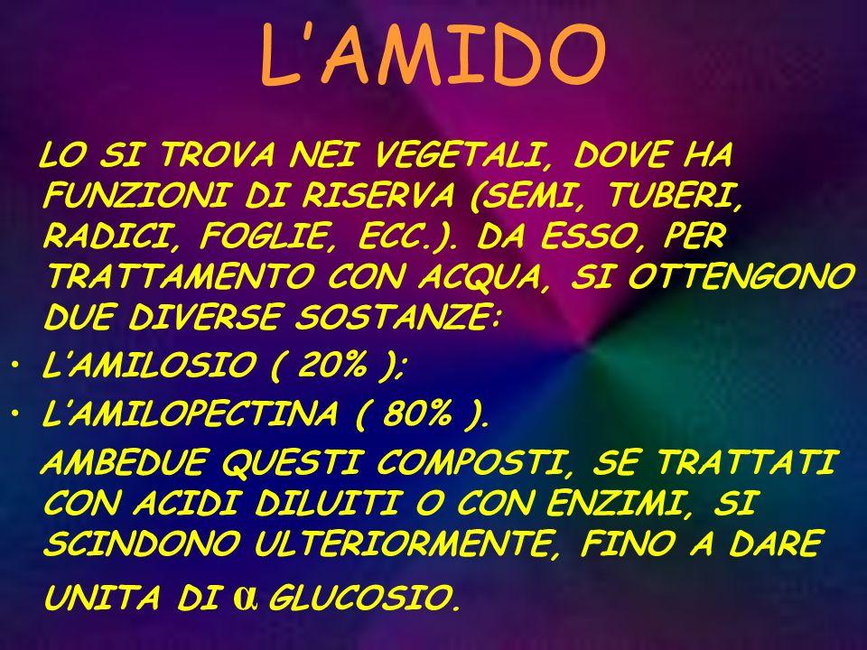 L'AMIDO