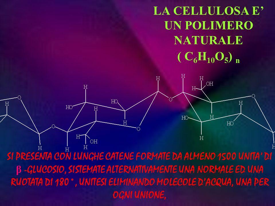 LA CELLULOSA E' UN POLIMERO NATURALE ( C6H10O5) n