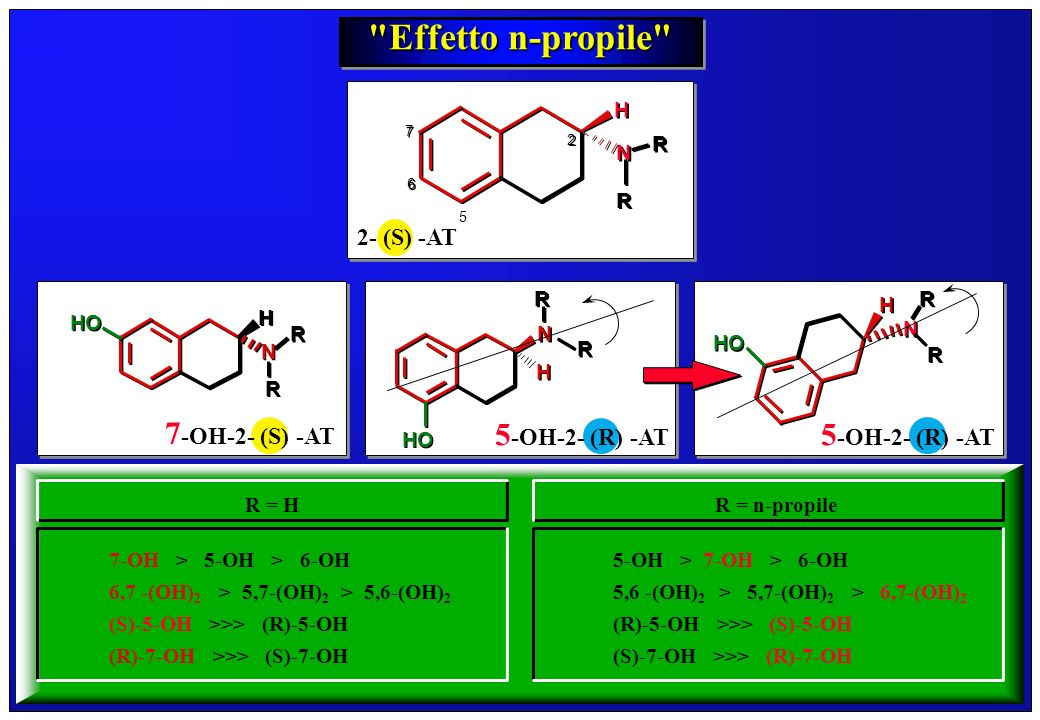 Effetto n-propile 7-OH-2- (S) -AT 5-OH-2- (R) -AT 5-OH-2- (R) -AT