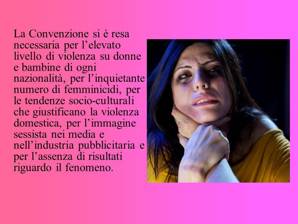 La Convenzione si è resa necessaria per l'elevato livello di violenza su donne e bambine di ogni nazionalità, per l'inquietante numero di femminicidi, per le tendenze socio-culturali che giustificano la violenza domestica, per l'immagine sessista nei media e nell'industria pubblicitaria e per l'assenza di risultati riguardo il fenomeno.