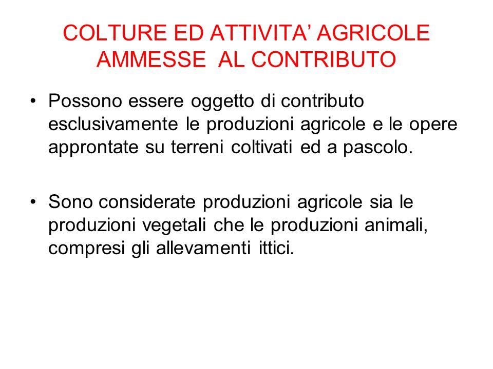 COLTURE ED ATTIVITA' AGRICOLE AMMESSE AL CONTRIBUTO