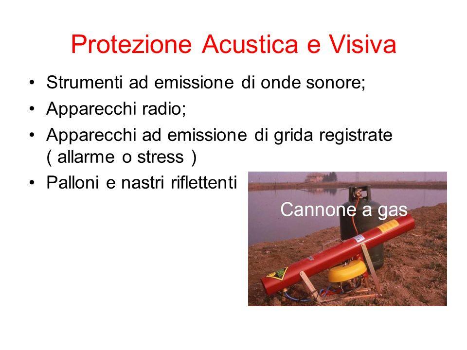 Protezione Acustica e Visiva