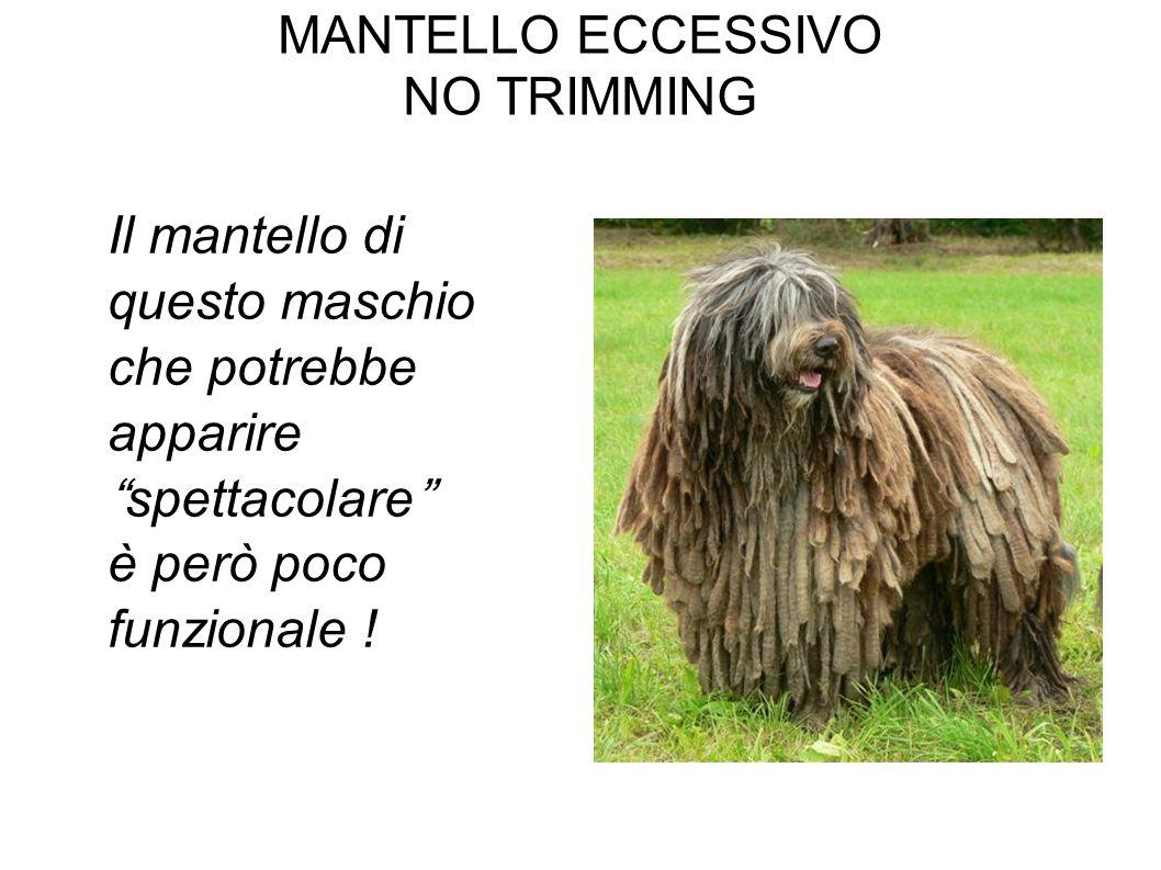 MANTELLO ECCESSIVO NO TRIMMING