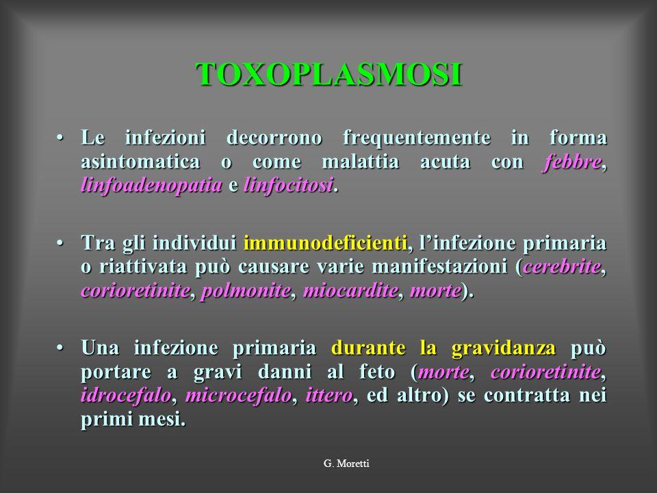 TOXOPLASMOSI Le infezioni decorrono frequentemente in forma asintomatica o come malattia acuta con febbre, linfoadenopatia e linfocitosi.