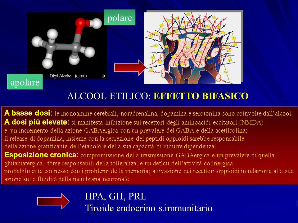 ALCOOL ETILICO: EFFETTO BIFASICO