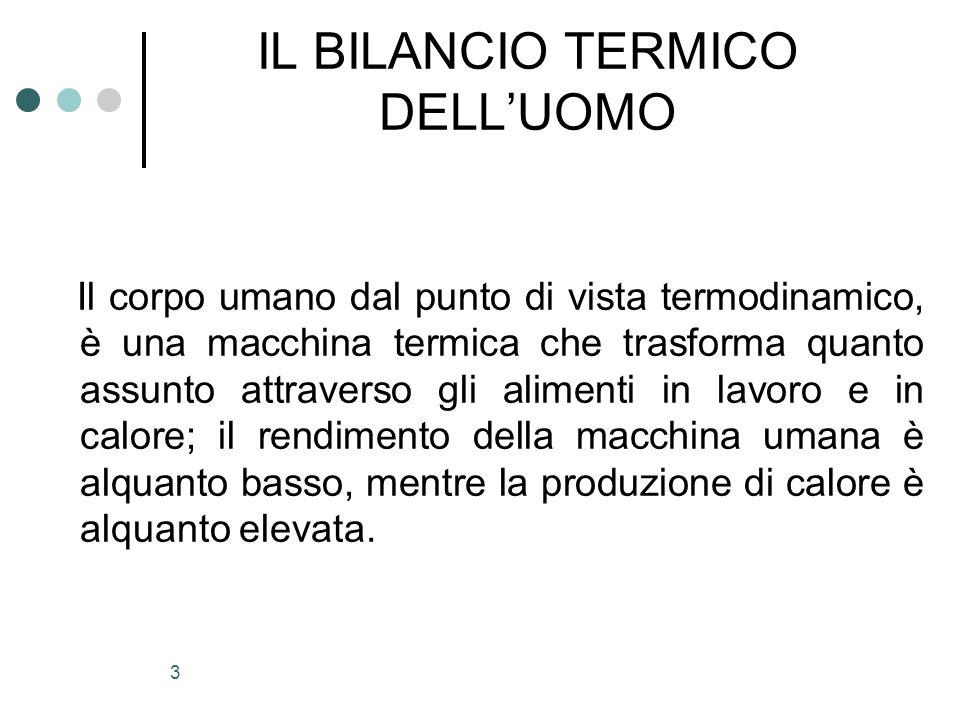 IL BILANCIO TERMICO DELL'UOMO