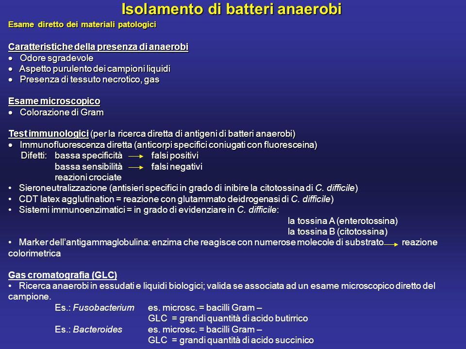 Isolamento di batteri anaerobi
