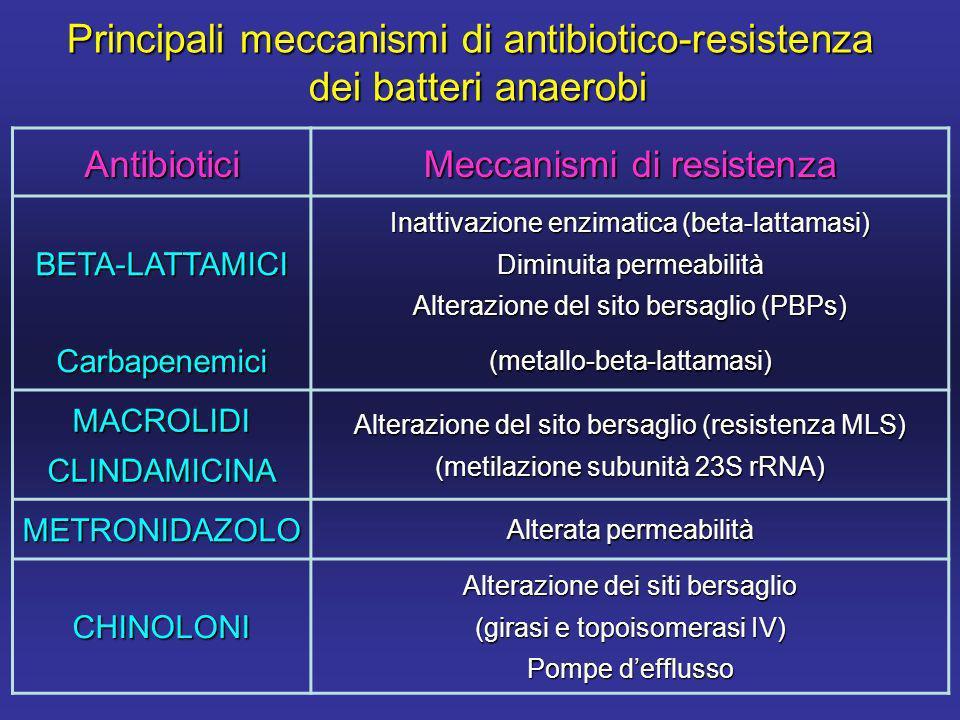 Principali meccanismi di antibiotico-resistenza dei batteri anaerobi