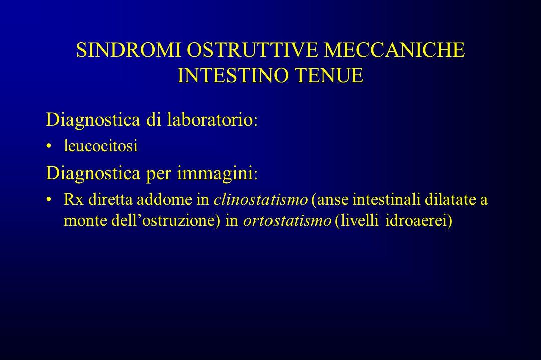 SINDROMI OSTRUTTIVE MECCANICHE INTESTINO TENUE