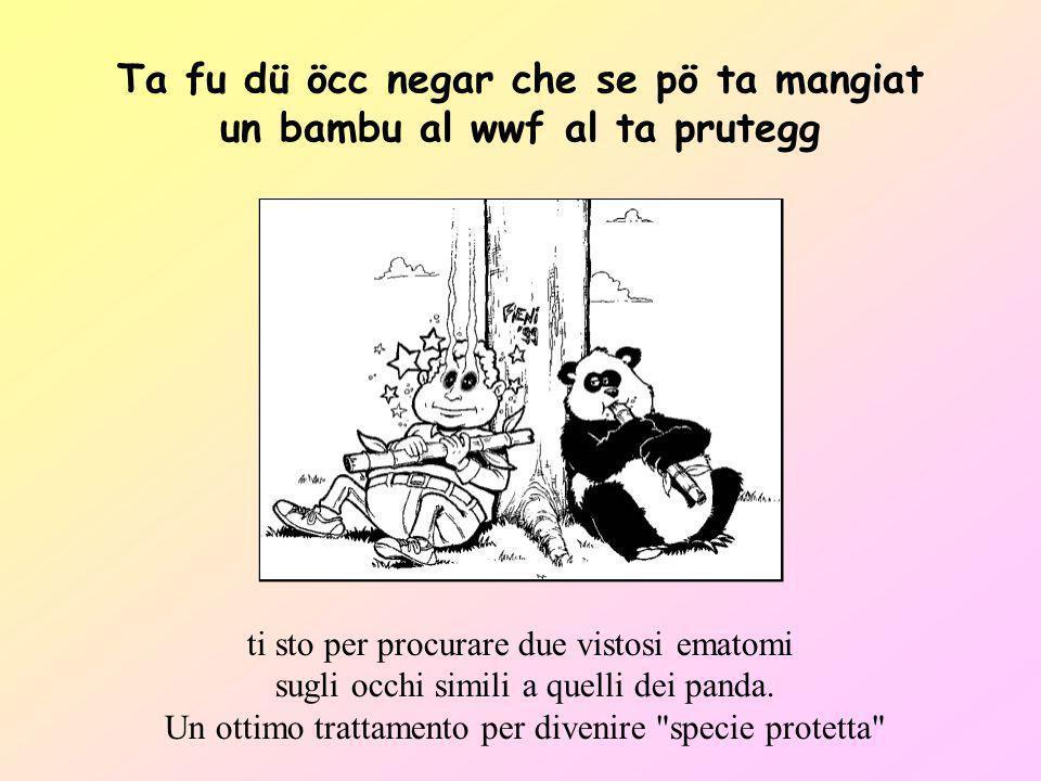 Ta fu dü öcc negar che se pö ta mangiat un bambu al wwf al ta prutegg
