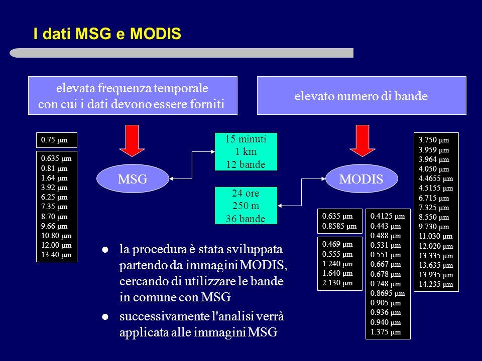 I dati MSG e MODIS elevata frequenza temporale