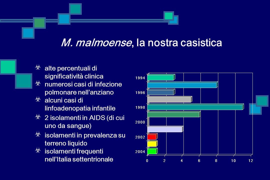 M. malmoense, la nostra casistica