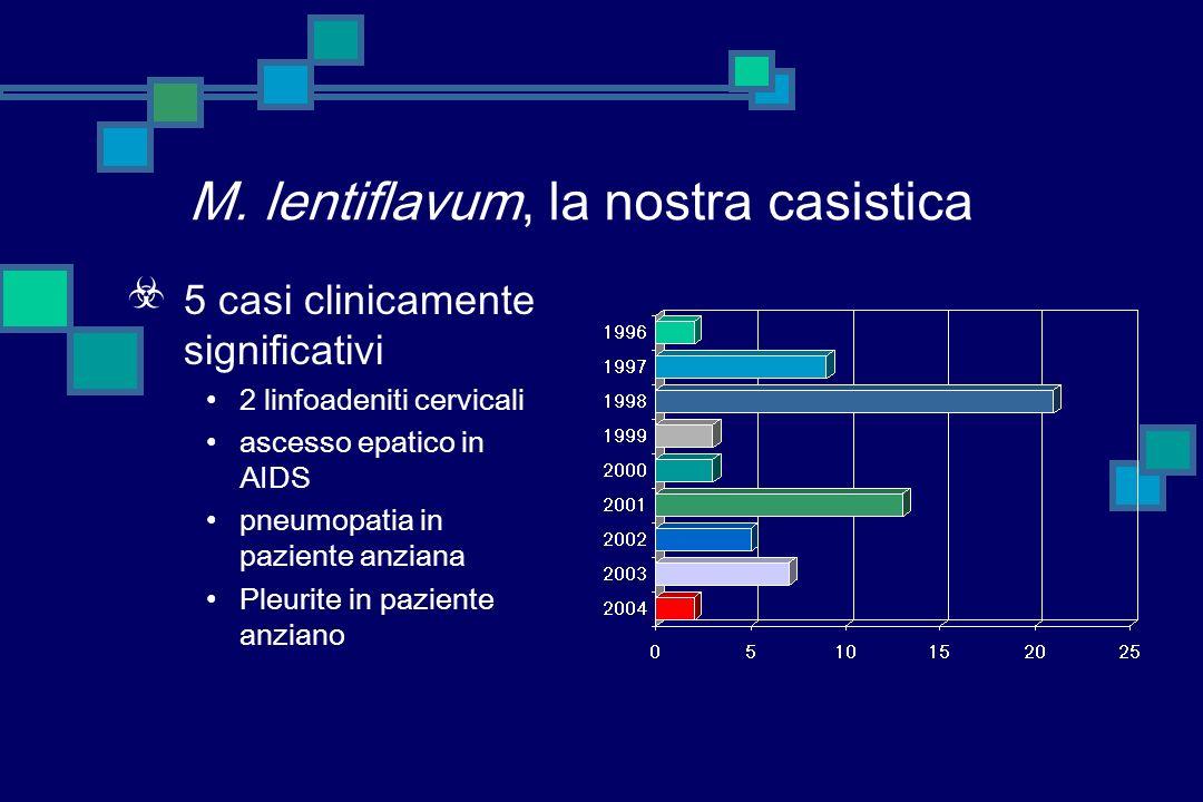 M. lentiflavum, la nostra casistica