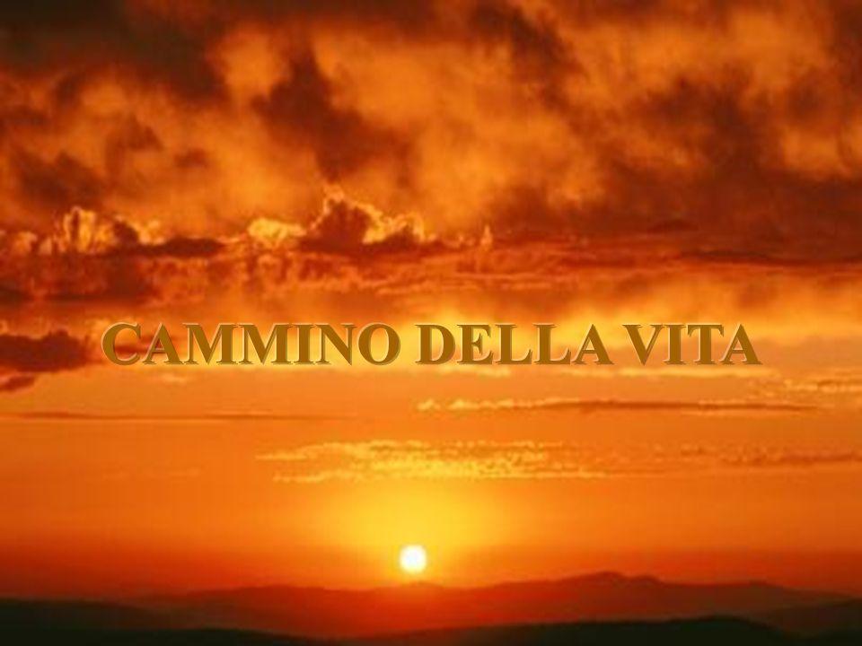 CAMMINO DELLA VITA