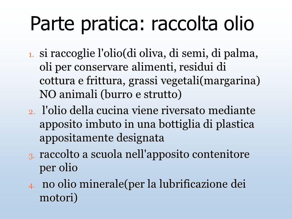 Parte pratica: raccolta olio