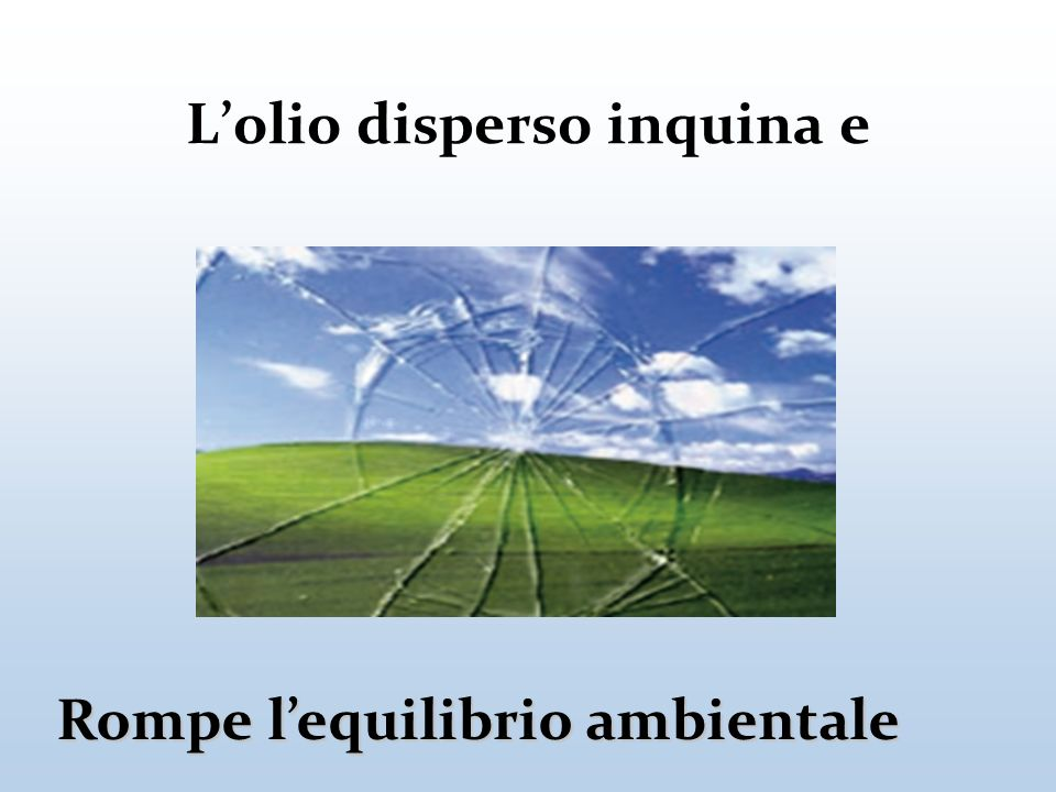 L'olio disperso inquina e