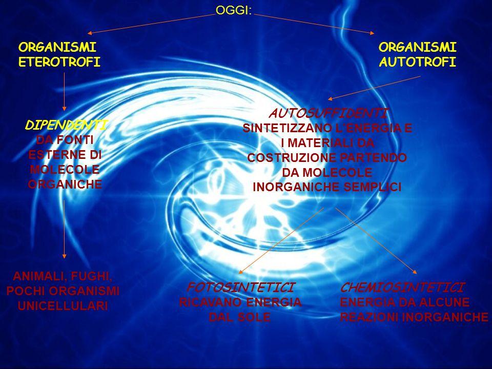 DIPENDENTI DA FONTI ESTERNE DI MOLECOLE ORGANICHE