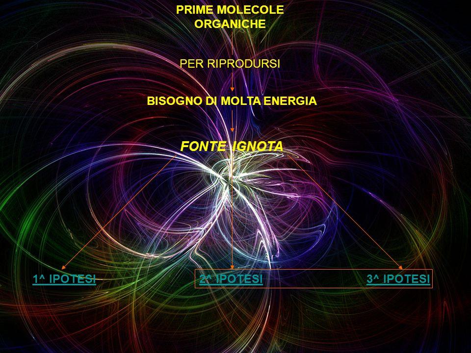 PRIME MOLECOLE ORGANICHE BISOGNO DI MOLTA ENERGIA