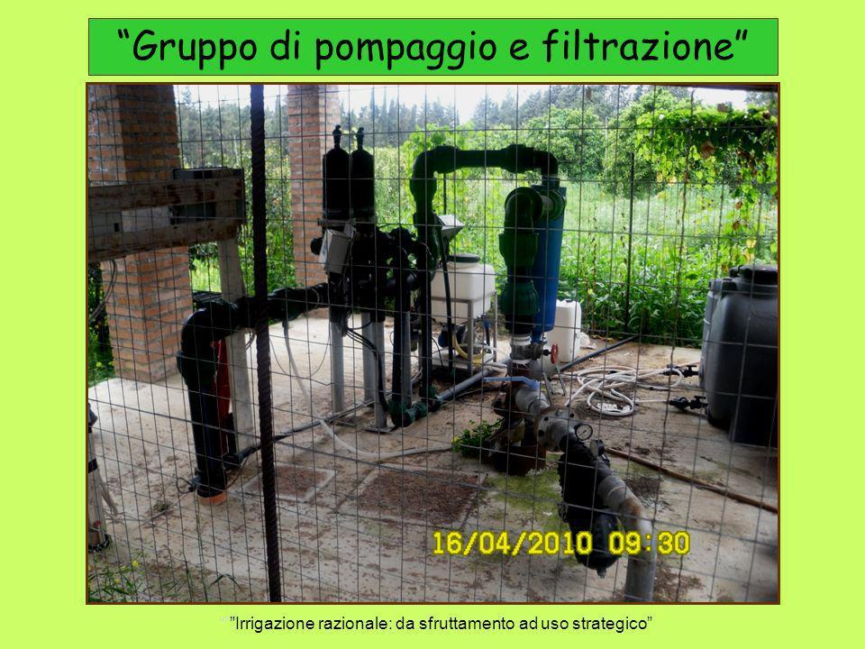 Gruppo di pompaggio e filtrazione