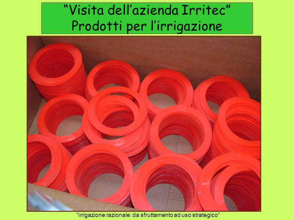 Visita dell'azienda Irritec Prodotti per l'irrigazione