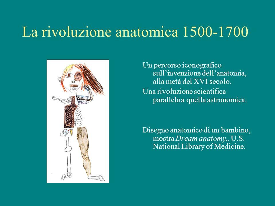 La rivoluzione anatomica 1500-1700