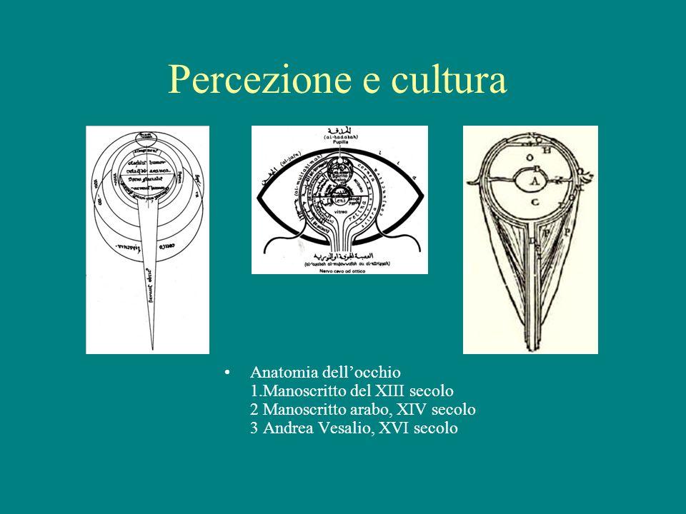 Percezione e cultura Anatomia dell'occhio 1.Manoscritto del XIII secolo 2 Manoscritto arabo, XIV secolo 3 Andrea Vesalio, XVI secolo.