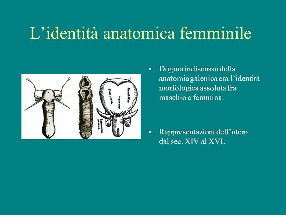 L'identità anatomica femminile