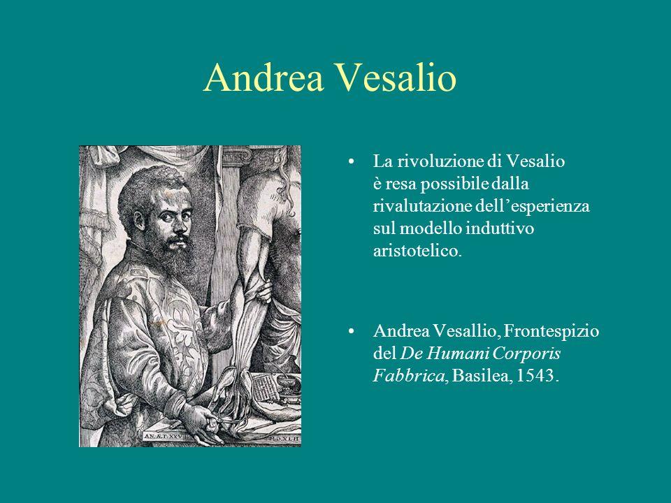 Andrea Vesalio La rivoluzione di Vesalio è resa possibile dalla rivalutazione dell'esperienza sul modello induttivo aristotelico.
