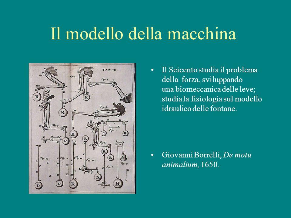 Il modello della macchina