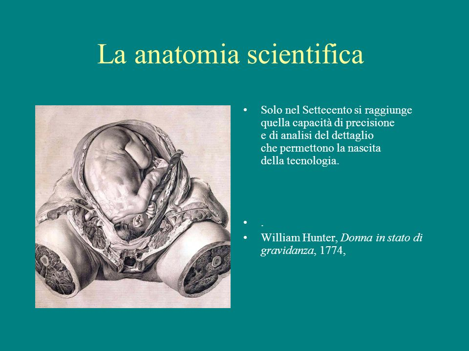 La anatomia scientifica