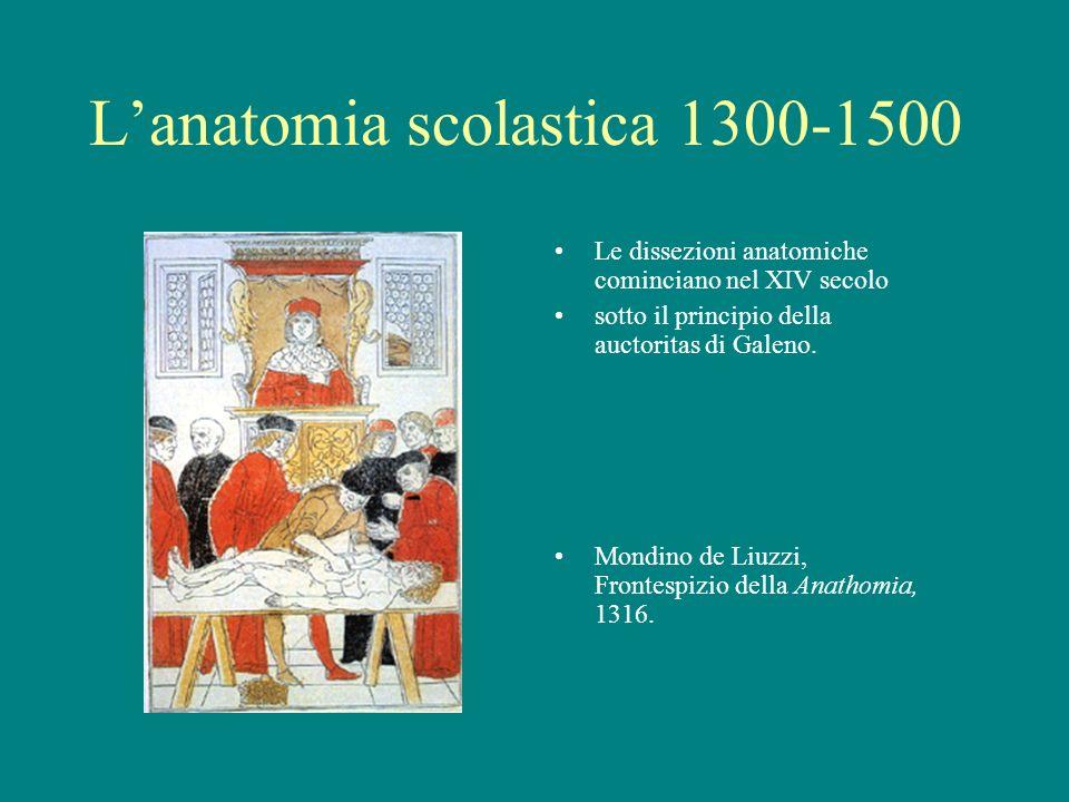 L'anatomia scolastica 1300-1500