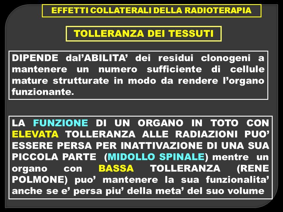 EFFETTI COLLATERALI DELLA RADIOTERAPIA TOLLERANZA DEI TESSUTI