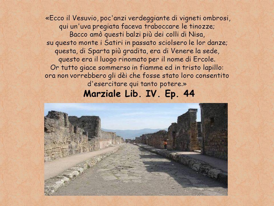 «Ecco il Vesuvio, poc anzi verdeggiante di vigneti ombrosi,