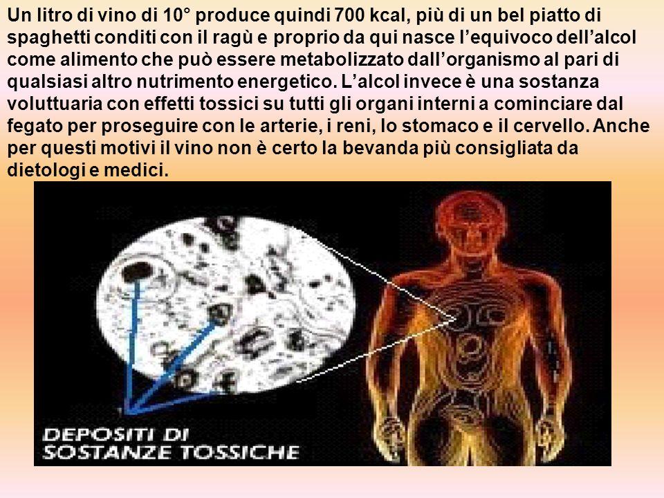 Un litro di vino di 10° produce quindi 700 kcal, più di un bel piatto di spaghetti conditi con il ragù e proprio da qui nasce l'equivoco dell'alcol come alimento che può essere metabolizzato dall'organismo al pari di qualsiasi altro nutrimento energetico.