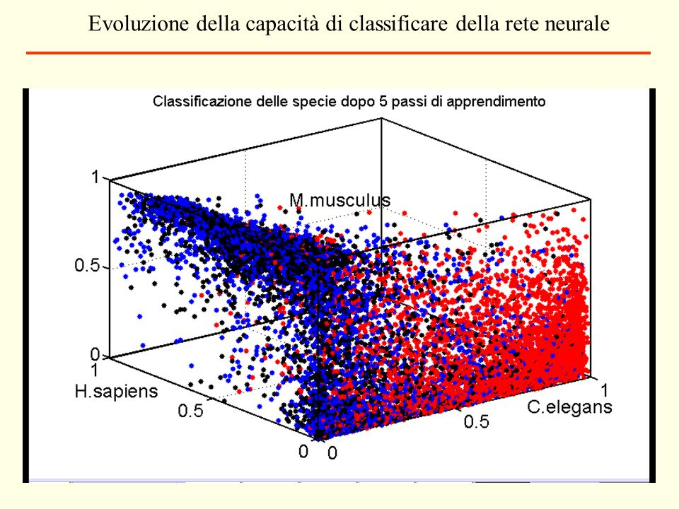 Evoluzione della capacità di classificare della rete neurale