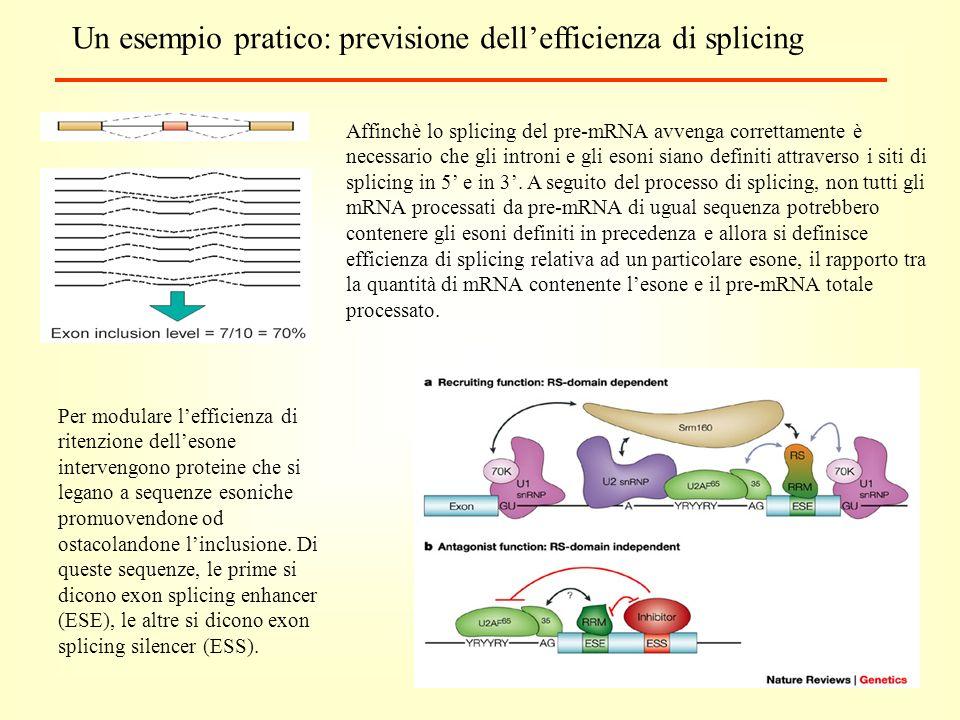 Un esempio pratico: previsione dell'efficienza di splicing