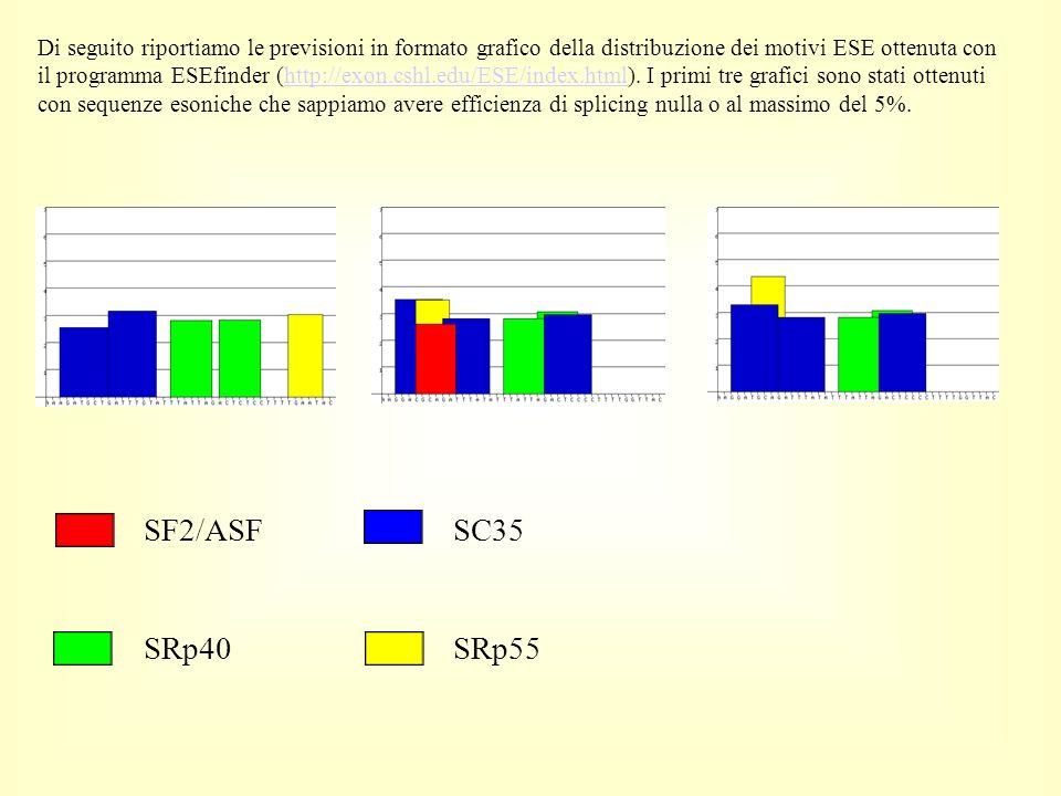 Di seguito riportiamo le previsioni in formato grafico della distribuzione dei motivi ESE ottenuta con il programma ESEfinder (http://exon.cshl.edu/ESE/index.html). I primi tre grafici sono stati ottenuti con sequenze esoniche che sappiamo avere efficienza di splicing nulla o al massimo del 5%.
