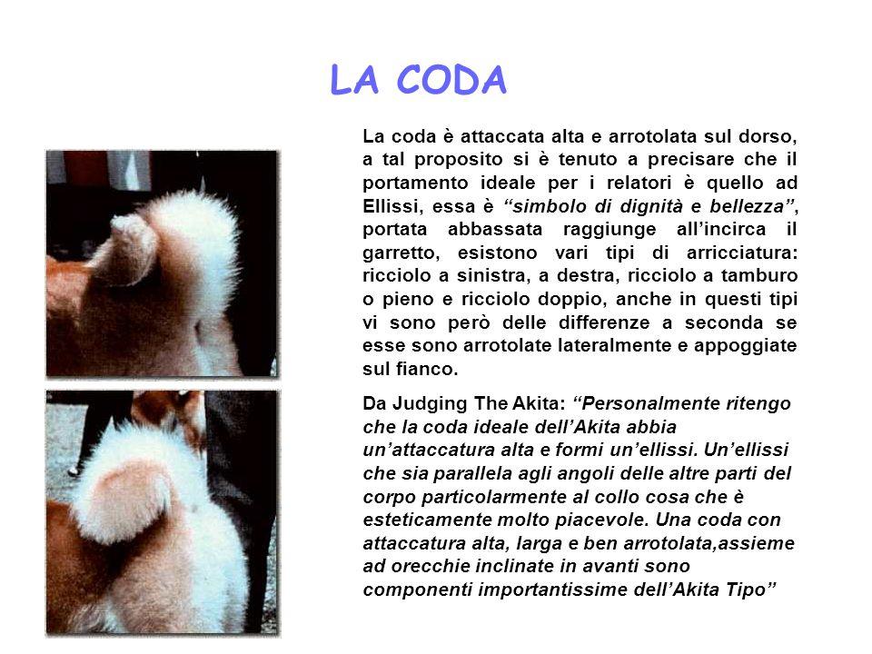 LA CODA