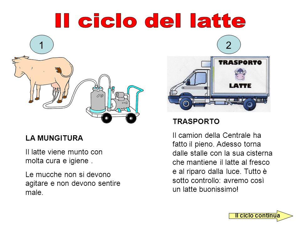 Il ciclo del latte 1 2 TRASPORTO