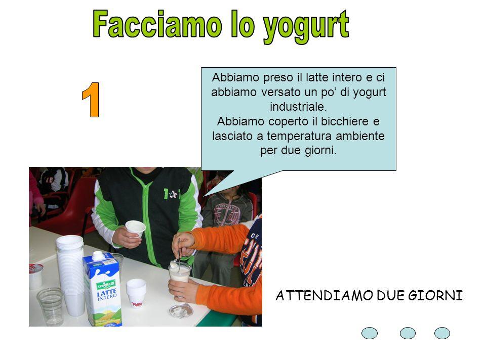 Facciamo lo yogurt 1 ATTENDIAMO DUE GIORNI