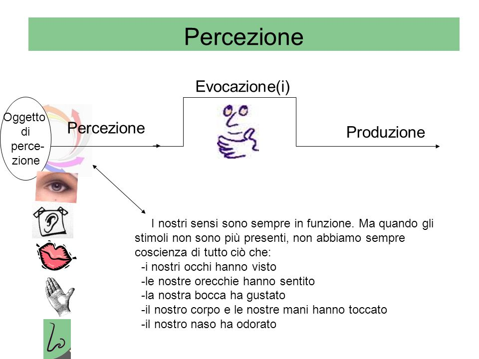 Percezione Evocazione(i) Percezione Produzione Oggetto di perce- zione