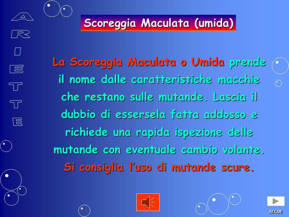 Scoreggia Maculata (umida)