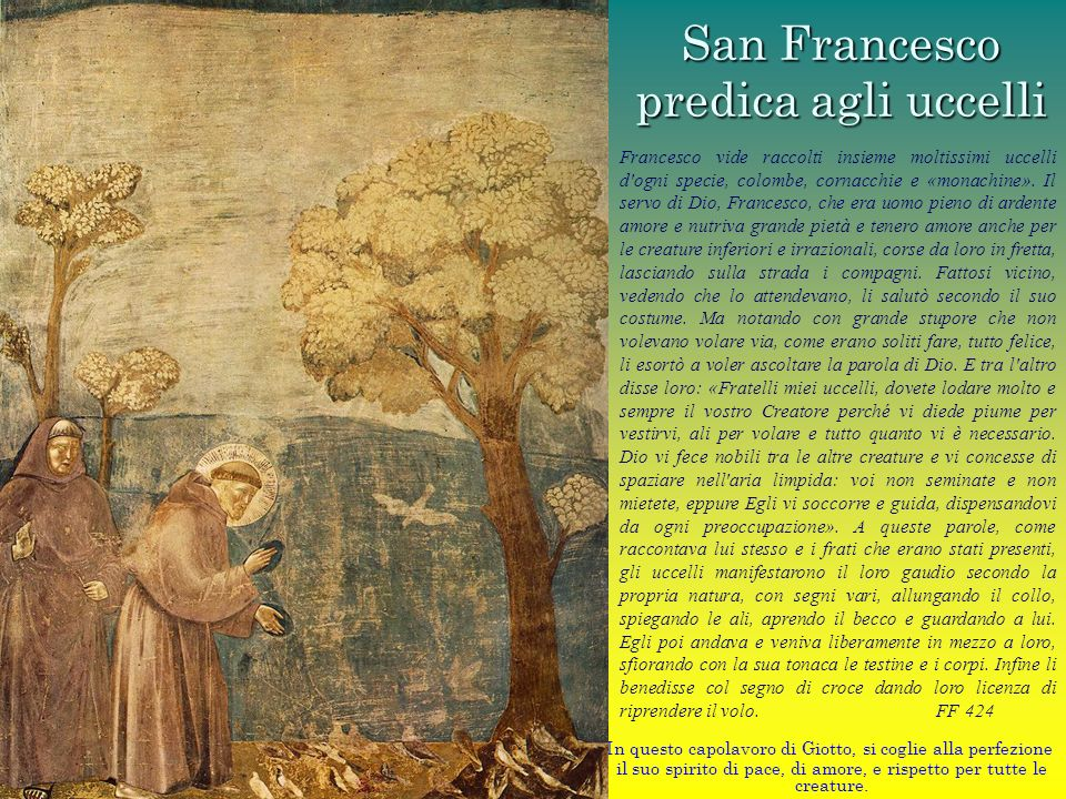 San Francesco predica agli uccelli