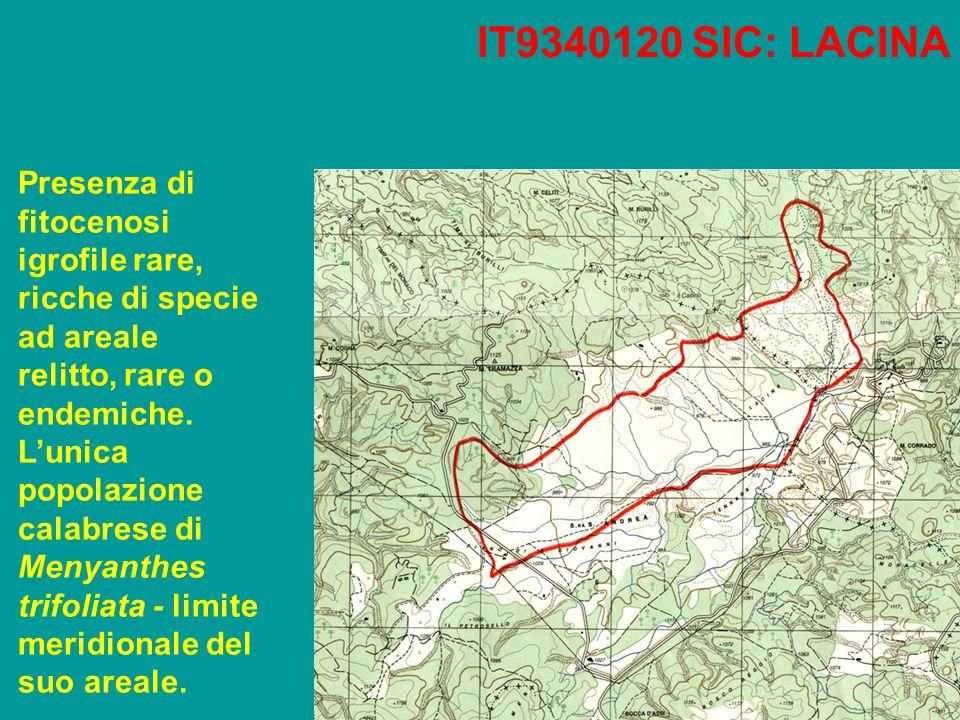 IT9340120 SIC: LACINA