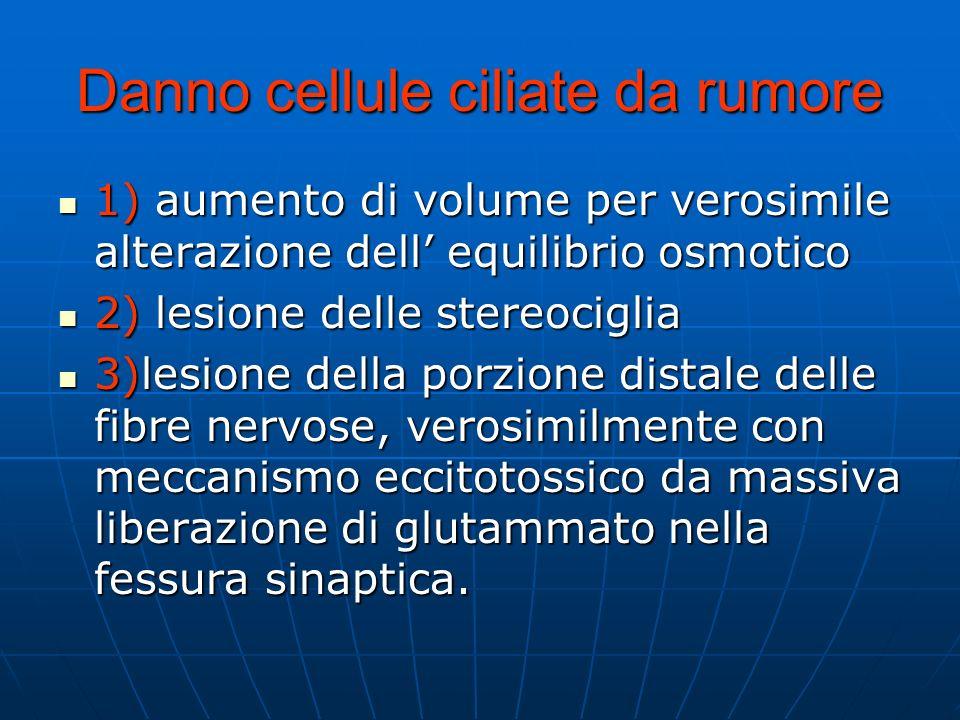 Danno cellule ciliate da rumore