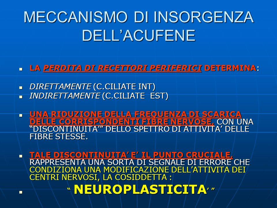 MECCANISMO DI INSORGENZA DELL'ACUFENE