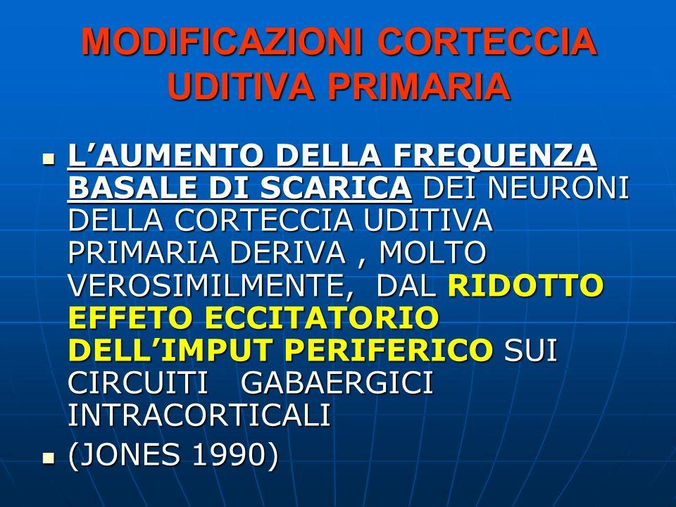 MODIFICAZIONI CORTECCIA UDITIVA PRIMARIA