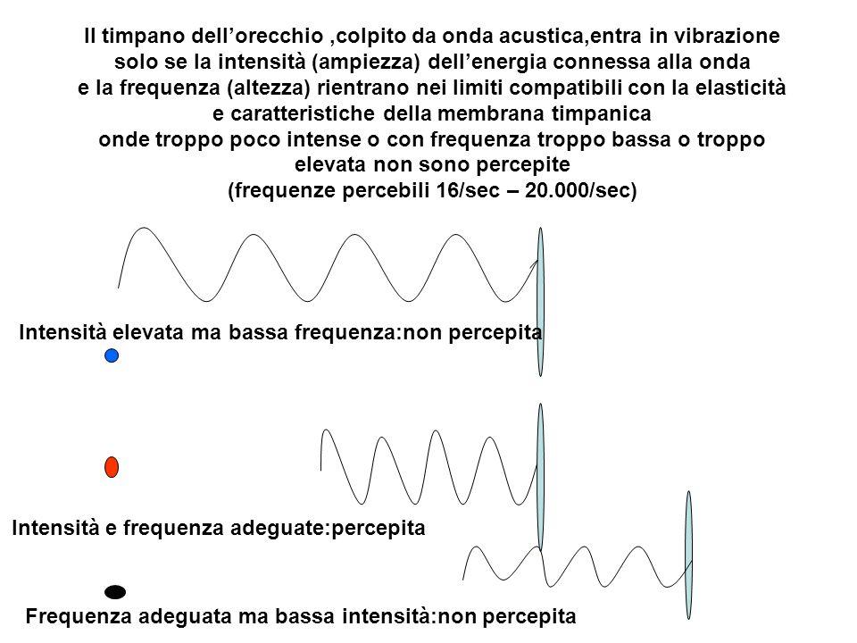 Il timpano dell'orecchio ,colpito da onda acustica,entra in vibrazione solo se la intensità (ampiezza) dell'energia connessa alla onda e la frequenza (altezza) rientrano nei limiti compatibili con la elasticità e caratteristiche della membrana timpanica onde troppo poco intense o con frequenza troppo bassa o troppo elevata non sono percepite (frequenze percebili 16/sec – 20.000/sec)
