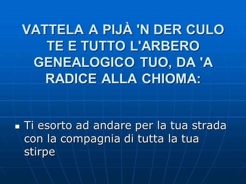 VATTELA A PIJÀ N DER CULO TE E TUTTO L ARBERO GENEALOGICO TUO, DA A RADICE ALLA CHIOMA: